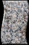 winterbirch-canada
