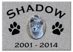 shadow-300x214